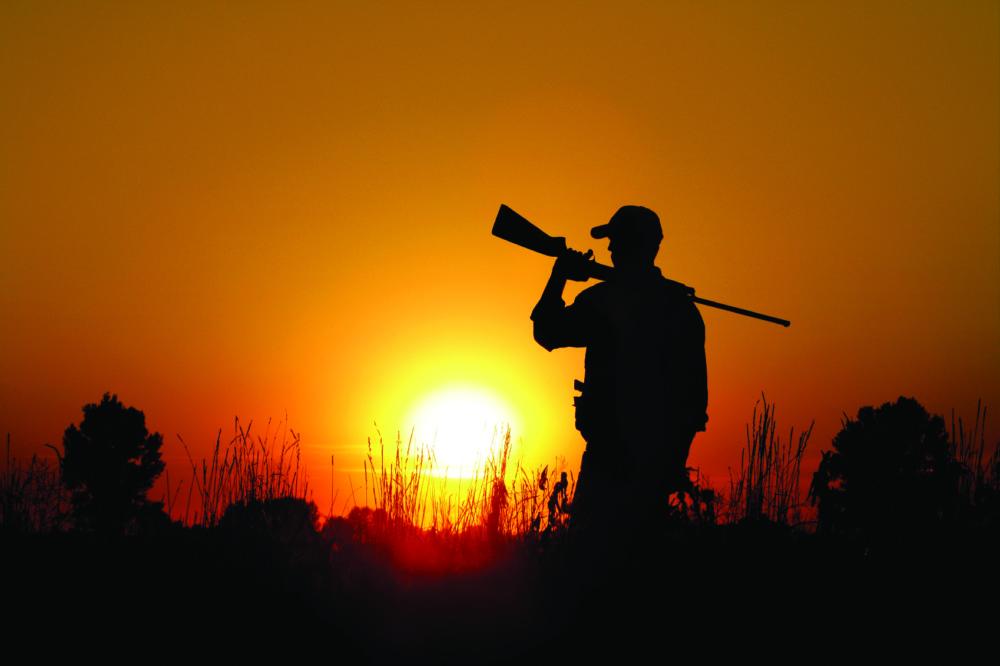 caccia estiva