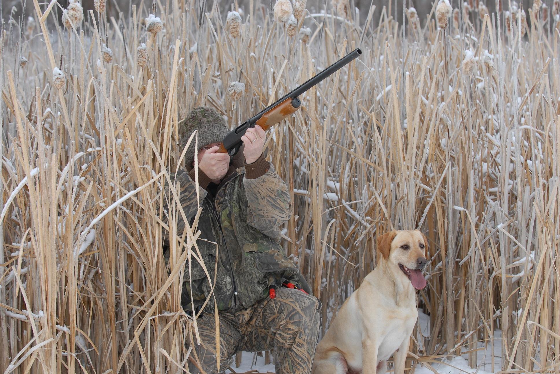 citazioni caccia